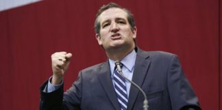 Sen. Ted Cruz, via PBS.